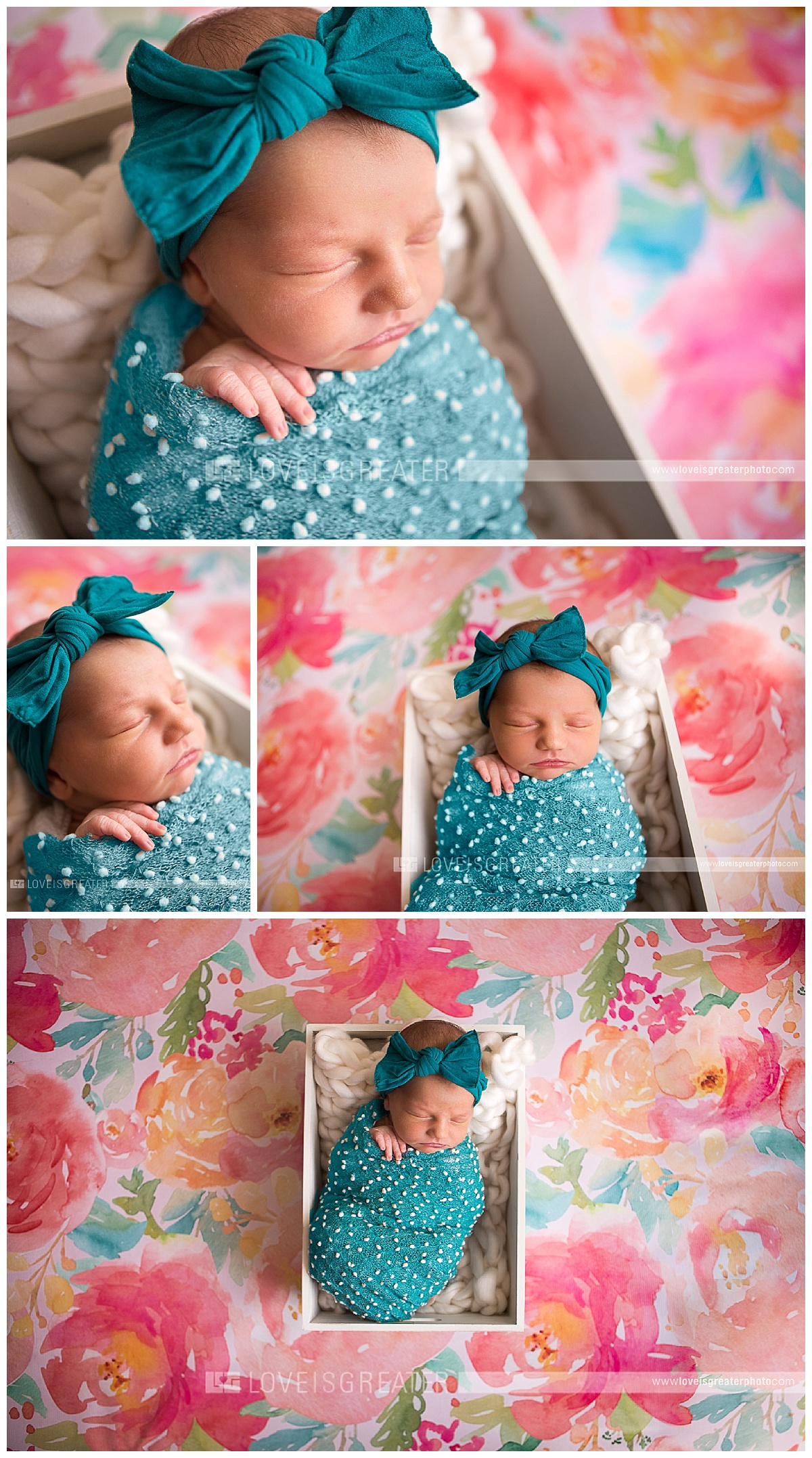 toledo-newborn-photographer_0033
