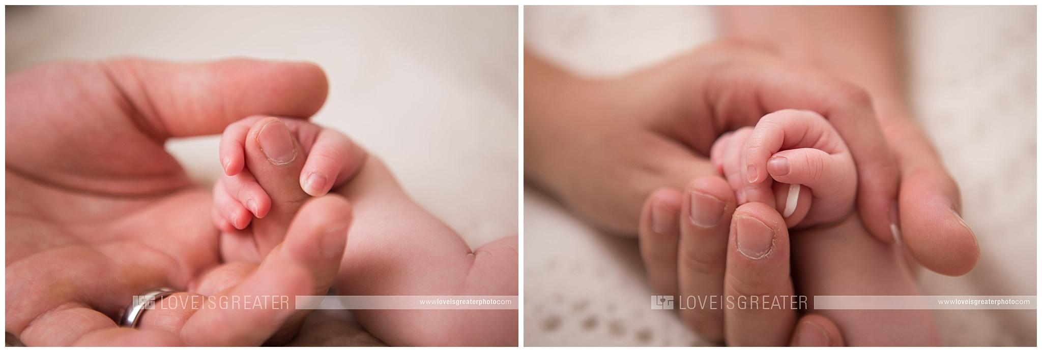 toledo-newborn-photographer_0004